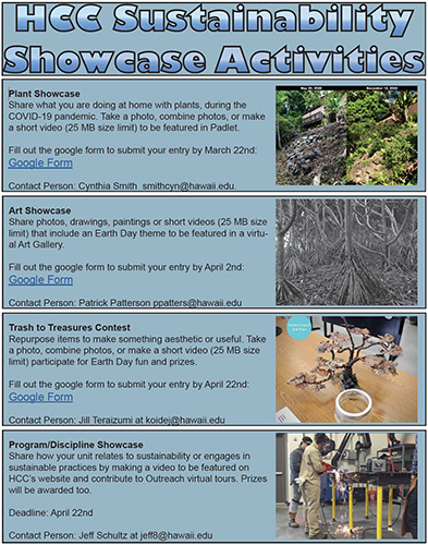 Photo of the Sustainability Showcase Activities Flyer